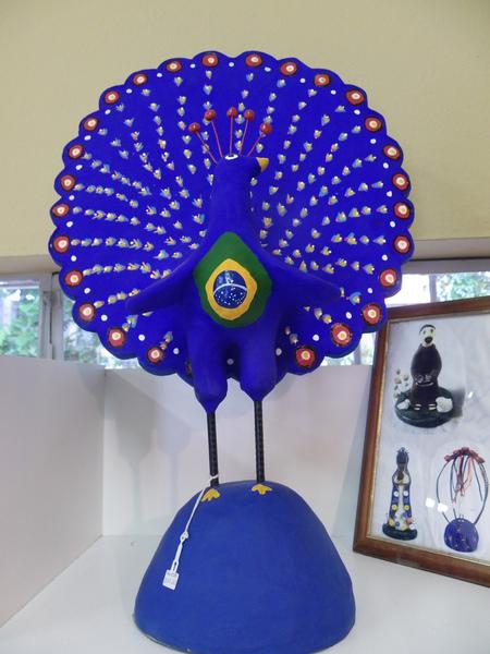 Pavao azul brasil