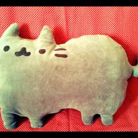 Almofada Pusheen Cat