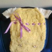 Roupa de lã PET  manga curta