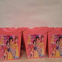 Cachepô Princesas