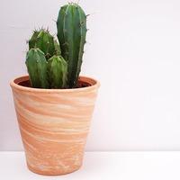 Vaso de Ceramica Grade